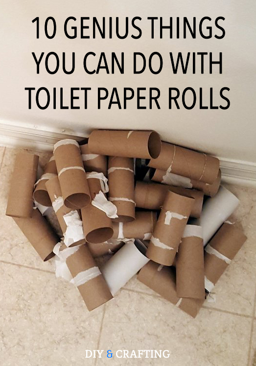 10 Genius Things You Can Do With Toilet Paper Rolls