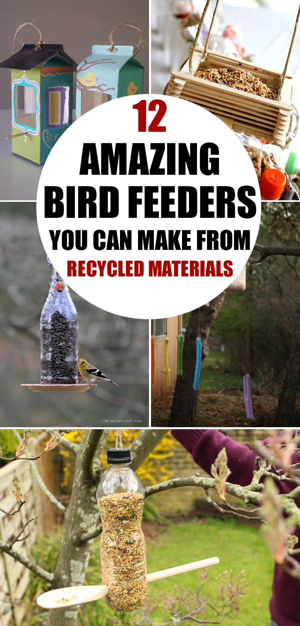 12 Amazing DIY Bird Feeders You Can Make from Recycled Materials