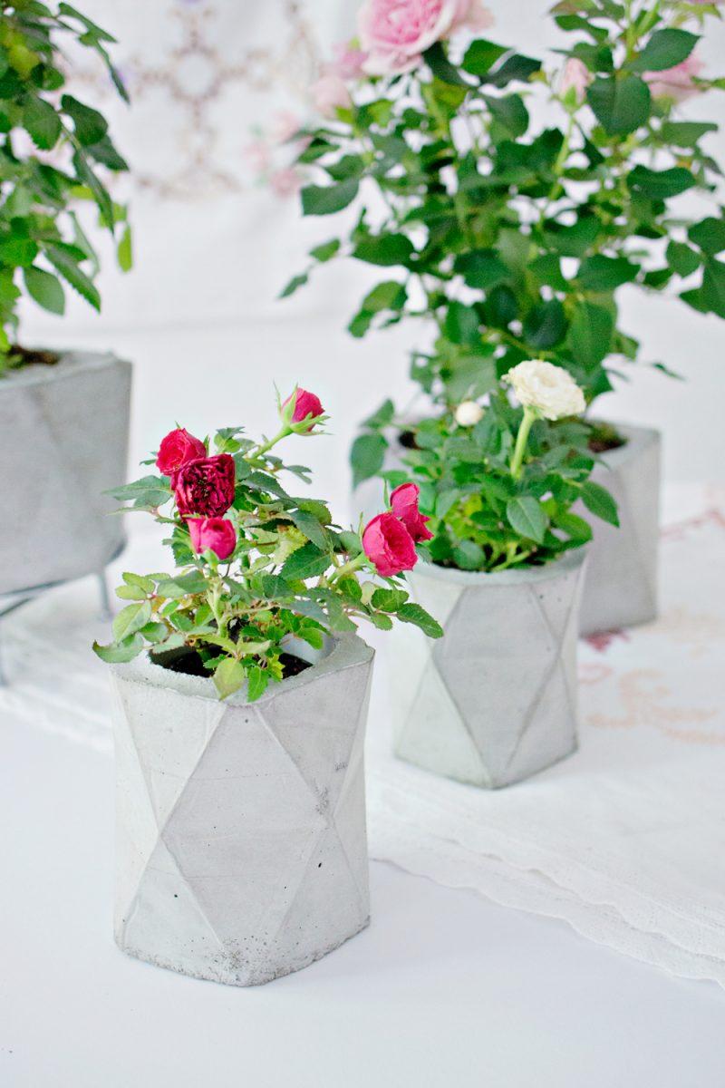 Geometric Concrete Planters