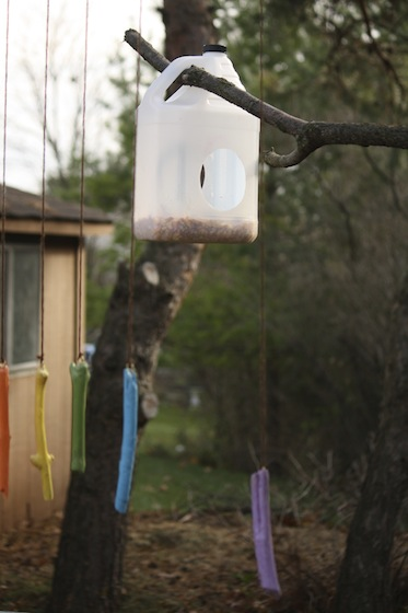 12 Amazing Diy Bird Feeders You Can Make From Recycled