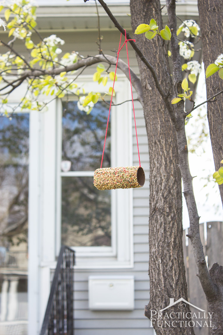12 amazing diy bird feeders you can make from recycled for Toilet paper tube bird feeder