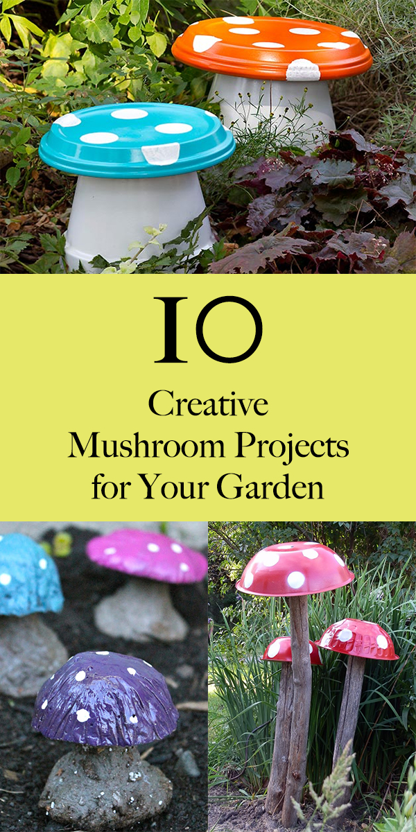 10 Creative Mushroom Projects for Your Garden