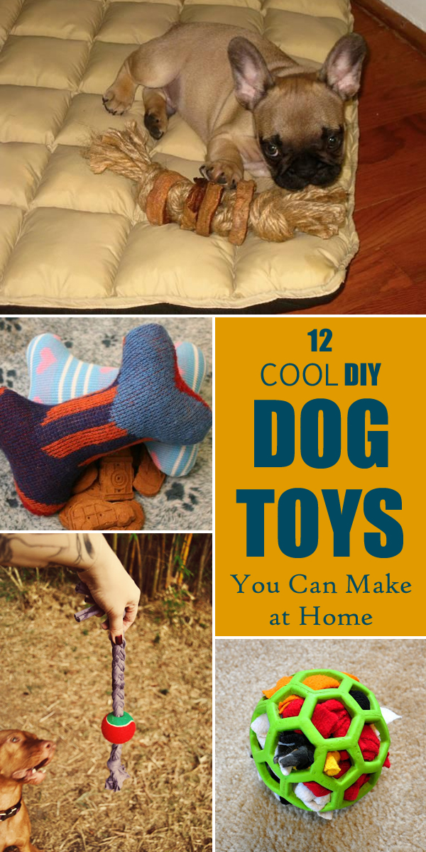 12 Cool DIY Dog Toys You Can Make at Home