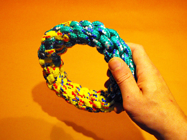 Ring Dog Toy