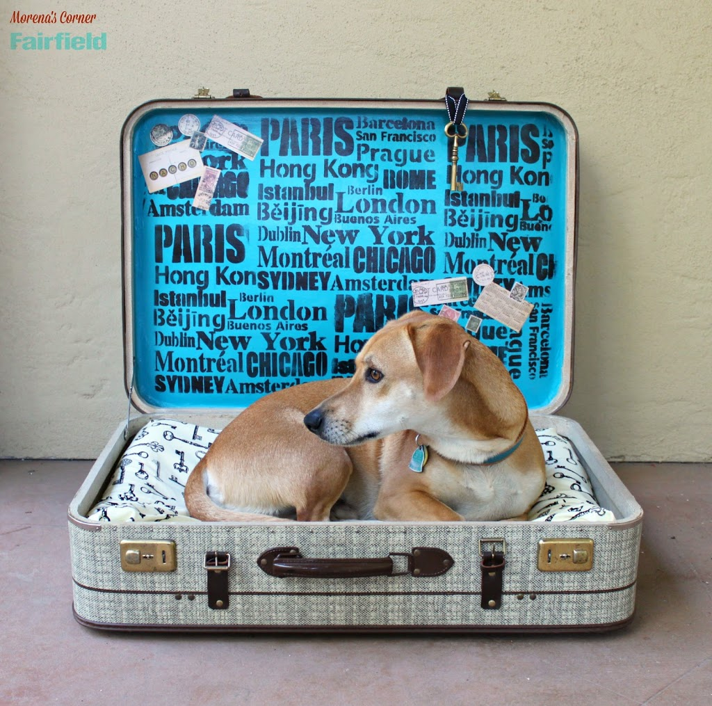 Repurpose a Suitcase into a No-Sew Pet Bed
