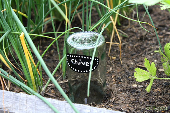 Wine Bottle Plant Marker