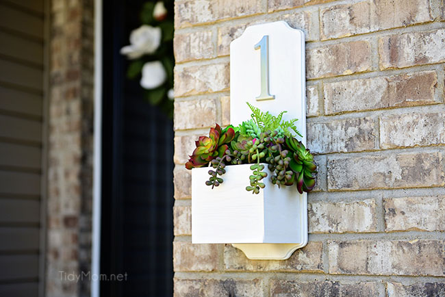 Address Planter Box with Succulents