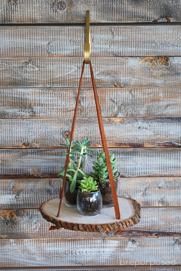 Hanging Wood Slice Plant Stand