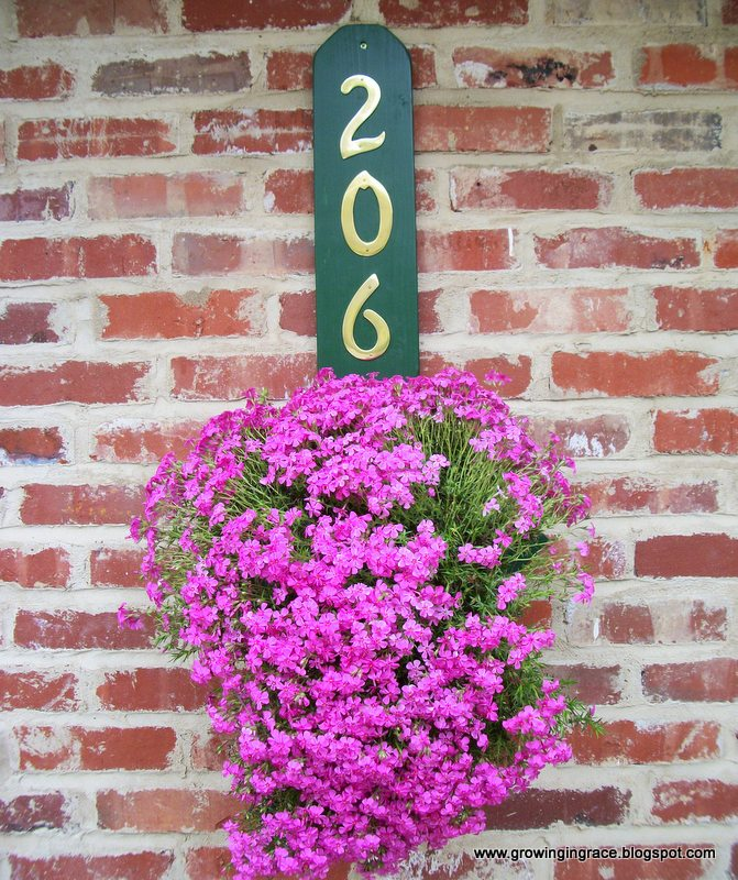 House Number Flower Hanger