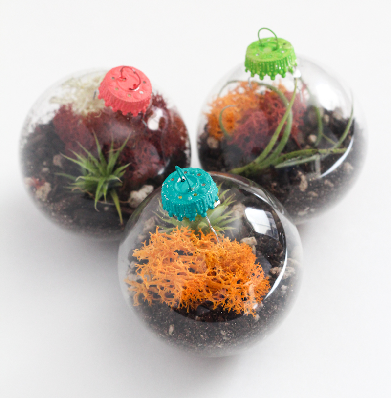 Ornament Terrariums