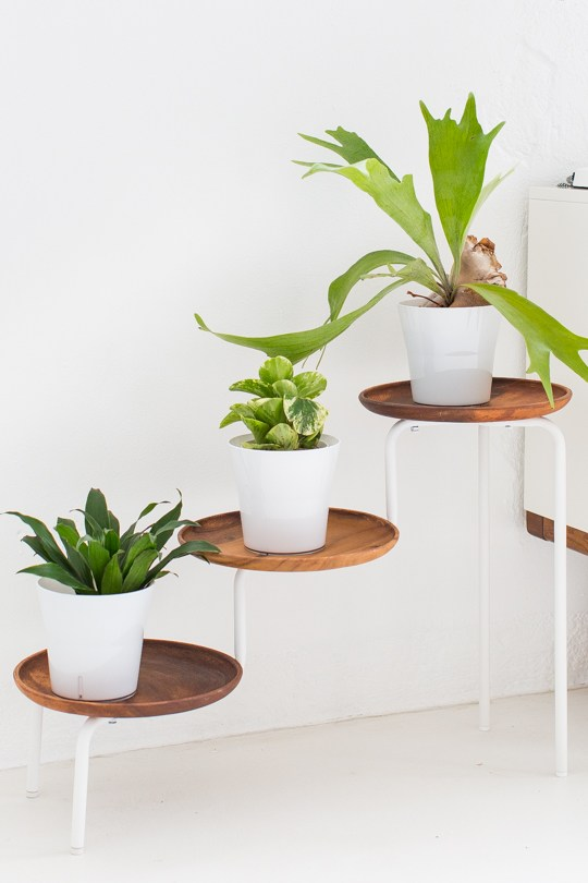 acacia wood plant stand