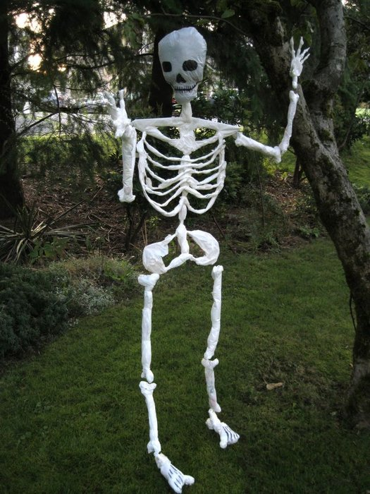 Skeleton Made of Plastic Bags