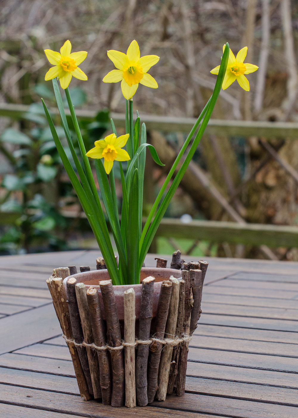 Twig Wrapped Flower Pots