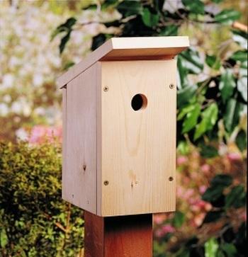One-Board Birdhouse